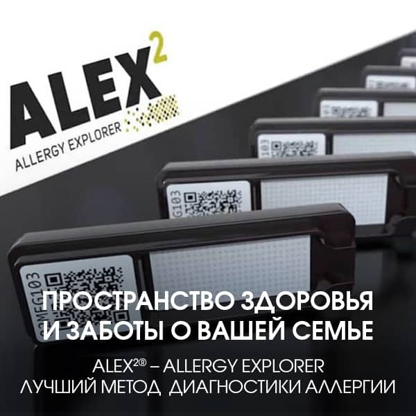bannera_alex_600